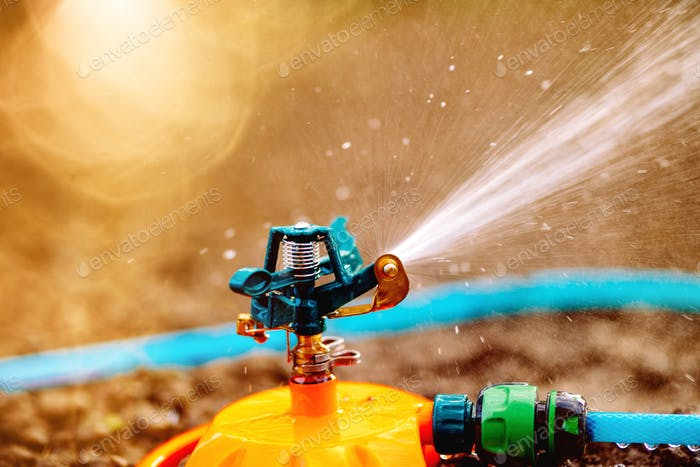 Automatic watering grass, lawn maintenance, gardening and sprinklers