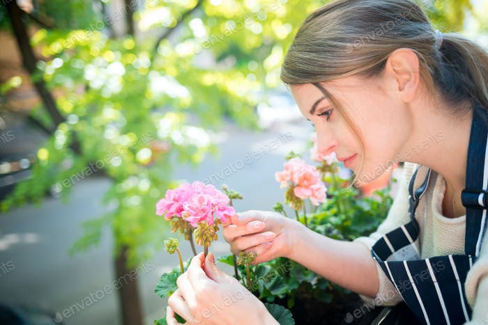 Woman takes care of flowers on balcony, home gardening