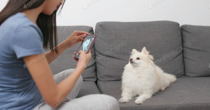 Woman taking photo on her dog at home