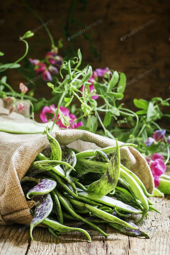 Green beans for lobio