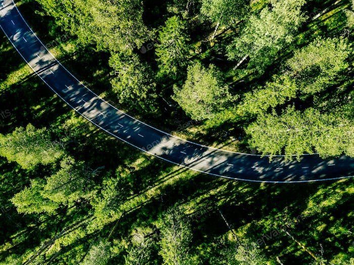 Aerial view of a road in green summer forest in Finland
