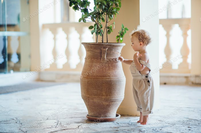 A side view of small toddler girl standing on tiptoes on summer holiday by a flower pot.