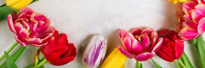 Frühlingsblumen. Feiertage, Ostern, alles Gute zum Geburtstag, Jahresfeier, Hochzeit, Glückwunschkarte