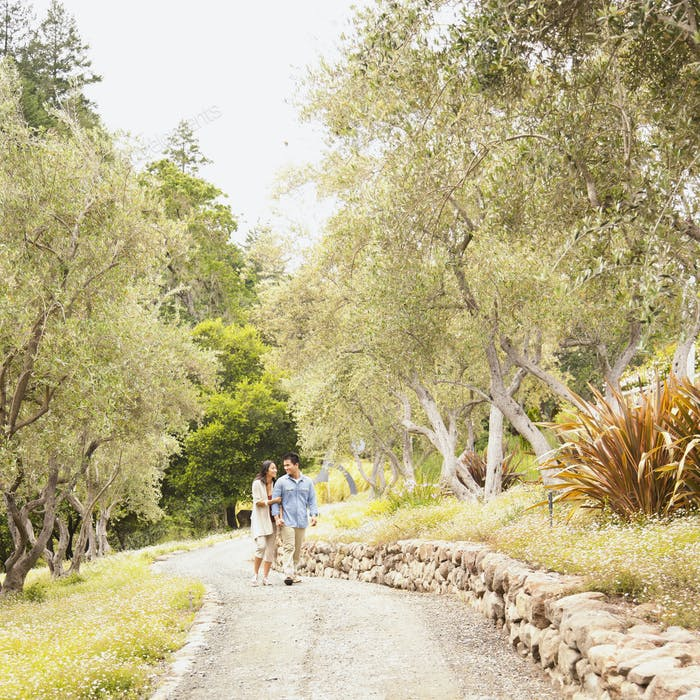 Wide shot of Chinese couple holding hands walking on path in wine country California