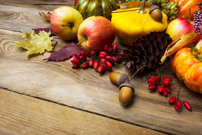 Thanksgiving background with pumpkins and barberry, copy space