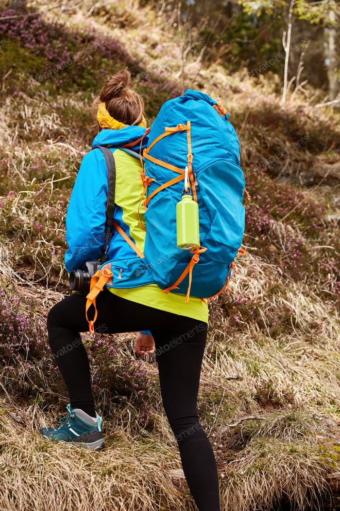 Vertical shot of backpacker overcomes hill by foot, carries touristic rucksack, puts all efforts, de
