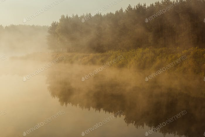 Dense fog over lake and forest in autumn season