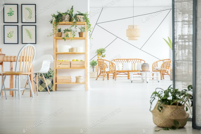 Living and dining room with plants