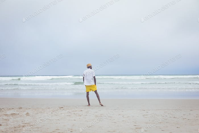 Rear view of African American man standing at beach on a sunny day
