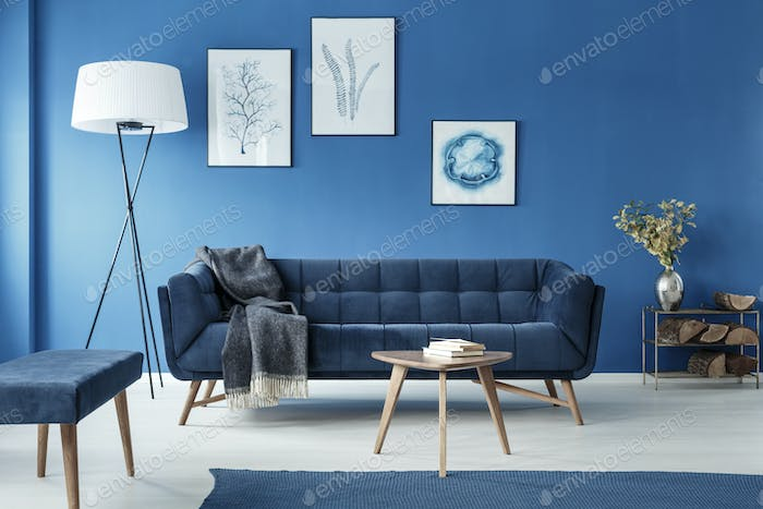 Cyan living room with sofa