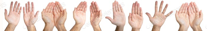 Male hands gesture collage isolated on white background.