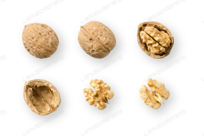 Walnuts, whole and opened, on white background