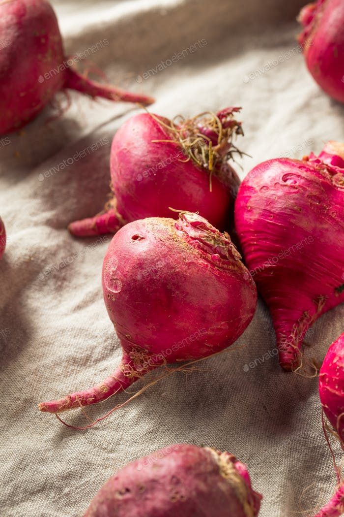 Pink and Red Beet Roots