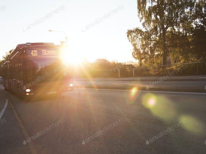 Bus auf der Straße am sonnigen Tag