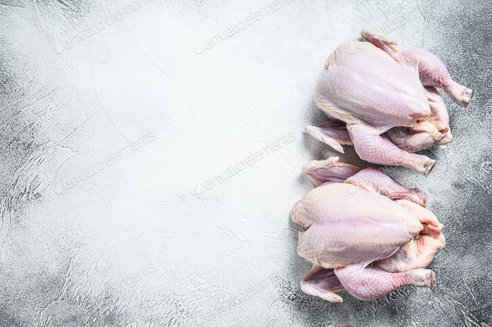 Whole raw Free range chicken. White background. Top view. Copy space
