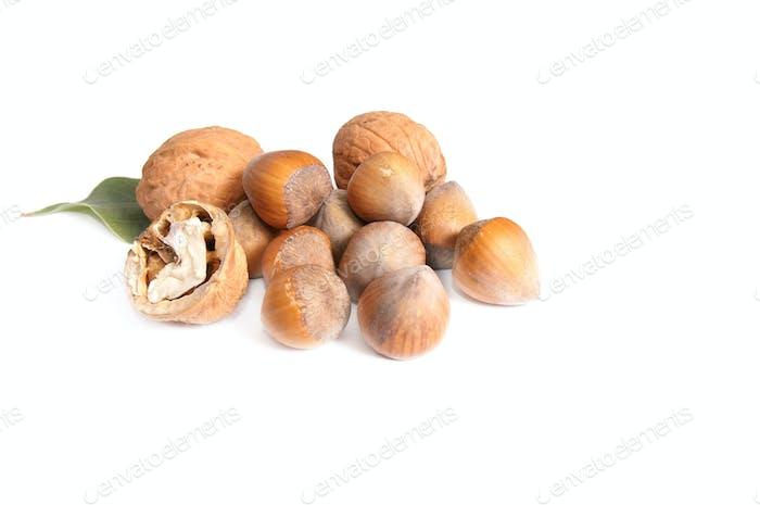Leckere Nüsse auf einem weißen.