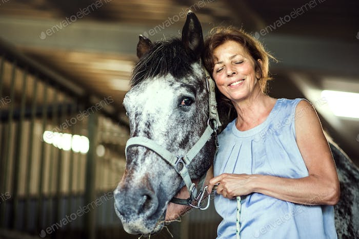 A senior woman standing close to a horse in a stable, holding it.