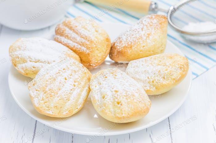 Zuckerpulver Madeleines auf der weißen Platte