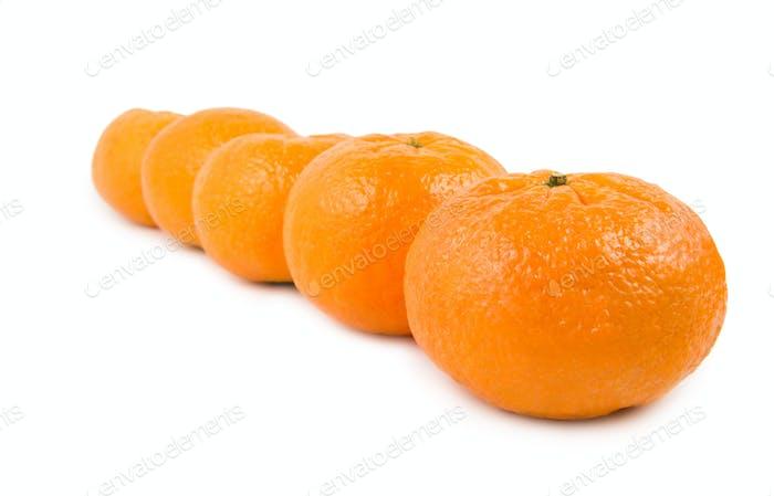 Group of mandarin