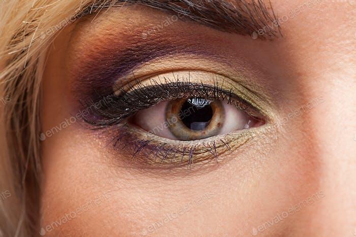 Auge mit professionellem Make-up in Nahaufnahme Bild