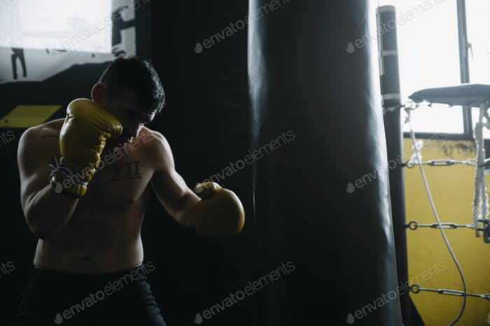 Sportsman training and punching bag