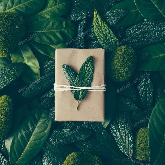 Kreatives Layout aus grünen Blättern mit DIY Geschenkbox. Flache Lag. Naturkonzept