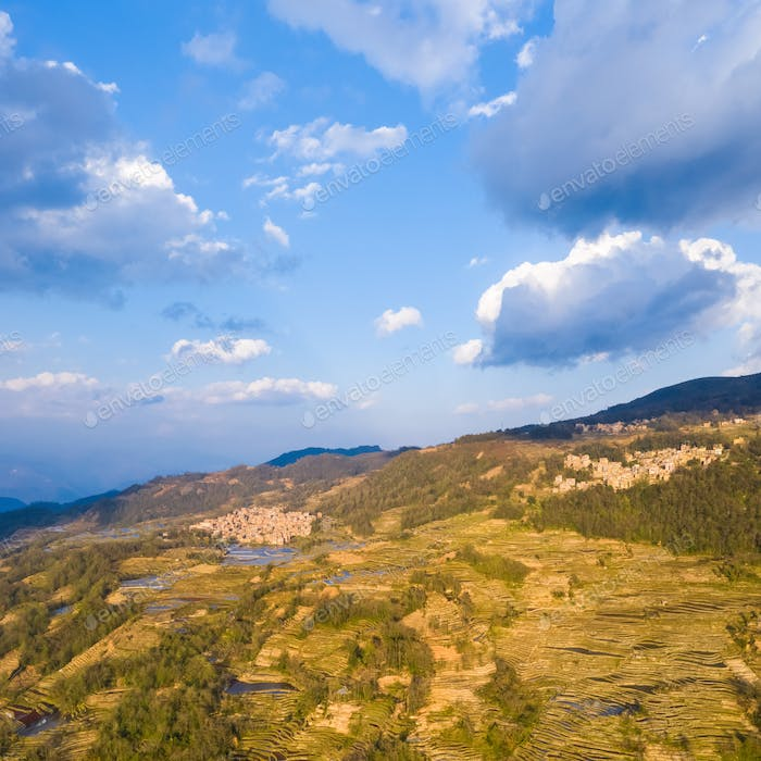 aerial view of beautiful terraced field landscape