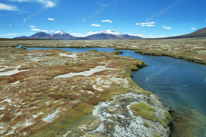 """""""Polloquere"""" hot Springs in """"Salar de Surire"""" national park"""""""