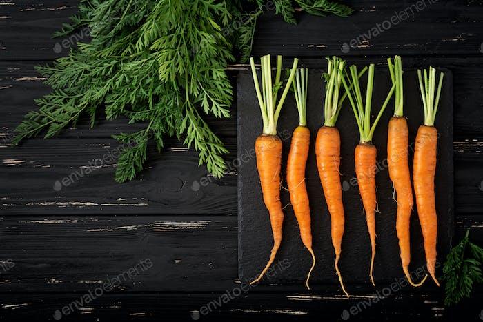 Bündel frische Karotten mit grünen Blättern auf dunklem Holzhintergrund. Flache Lag. Ansicht von oben