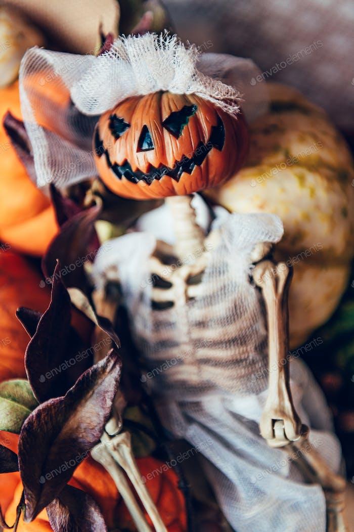 Pumpkins and skeleton pumpkin bride