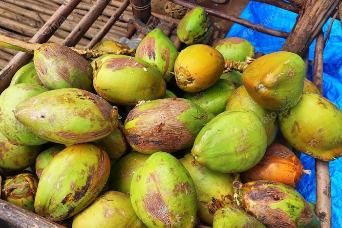 Bündel frischer grüner Kokosnüsse auf einem Markt in Indien