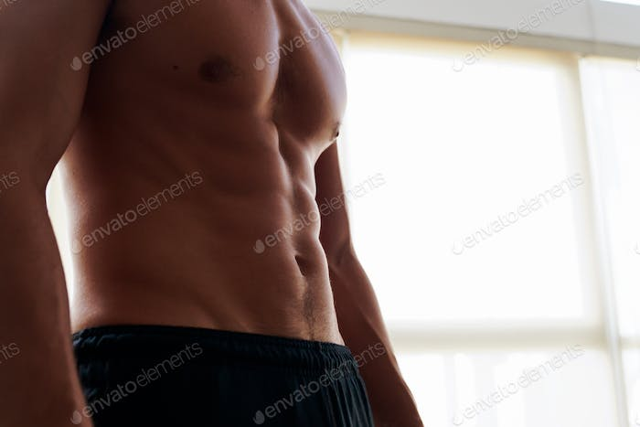Close Up of Developed and Strong Male Abdominal Area