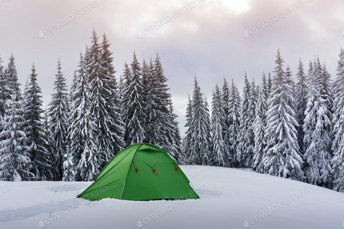 Grünes Zelt in Winterbergen
