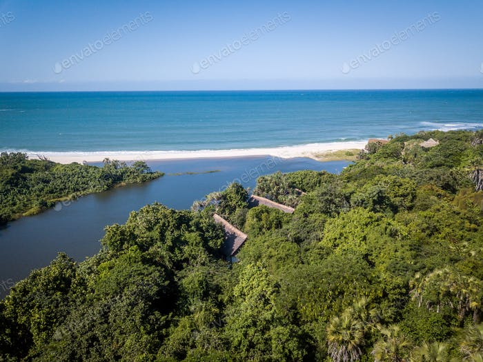 Drone picture of the forest and Indian ocean.