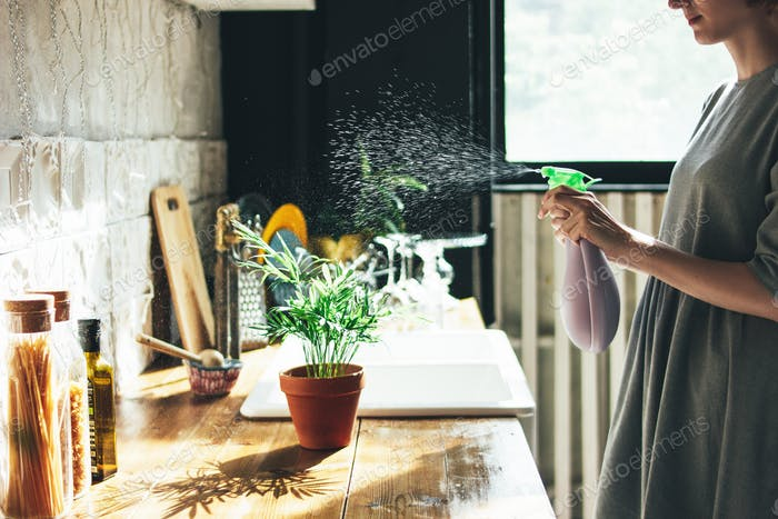 Young woman in grey dress sprays water on houseplant in kitchen