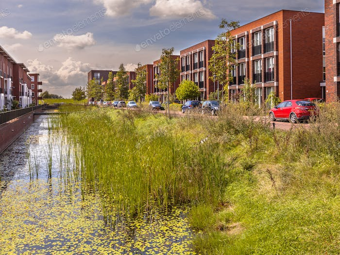 Urban street with ecological river bank