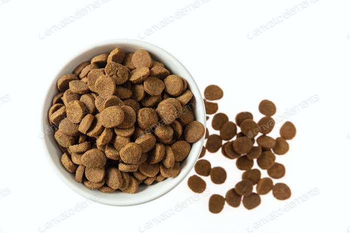 Dogs or cats dry food in a white bowl isolated on white background, top view