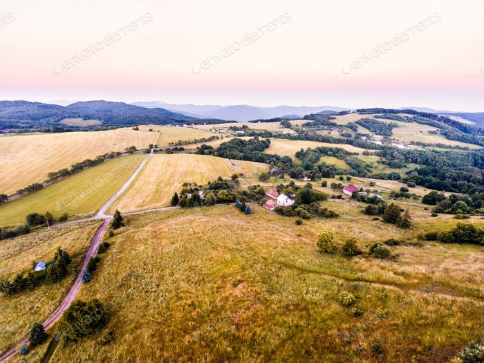 Aerial view of green grasslands, houses and forest, summer