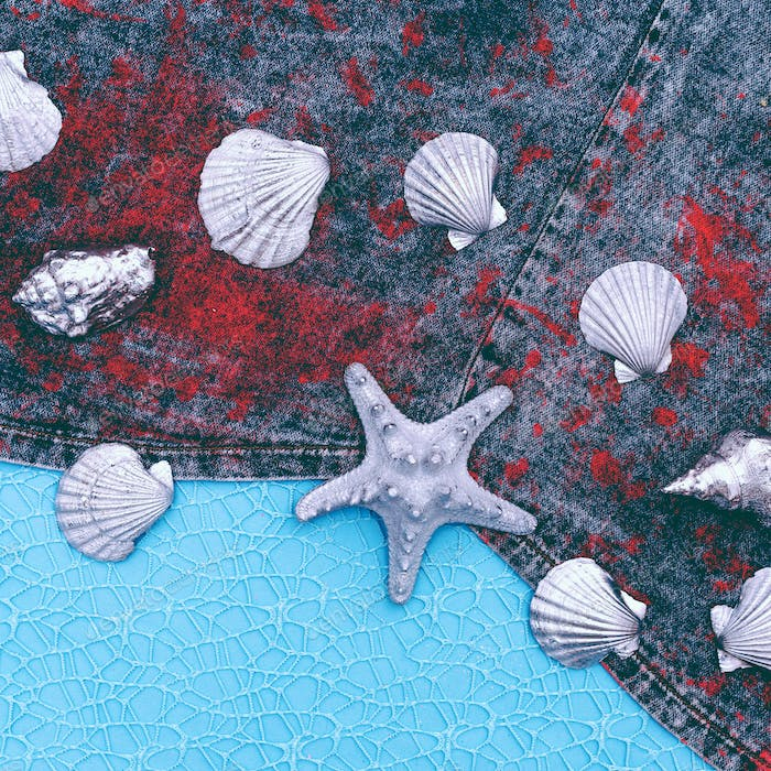Seashell set on a jeans background. Minimal art