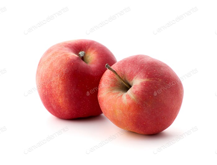 Two red ripe apples on a white background.