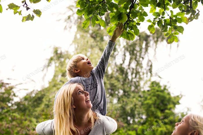 Mutter trägt Sohn, wie er einen Apfel im Hof zupft