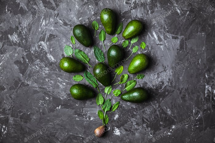 Avocado tree made from leaves on a dark background