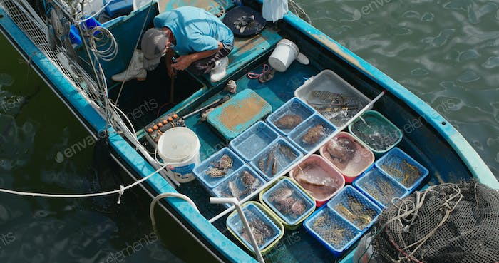 Sell seafood on fisherman boat