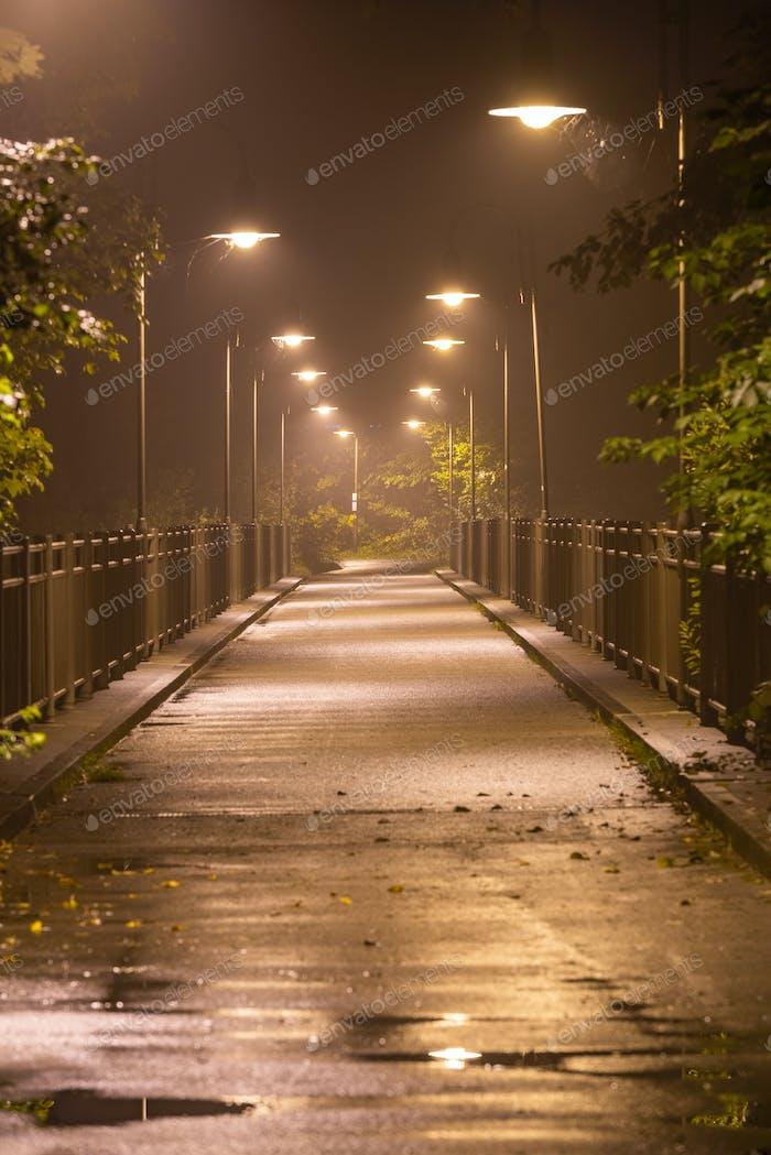 Moody Bridge on a Hazy Night