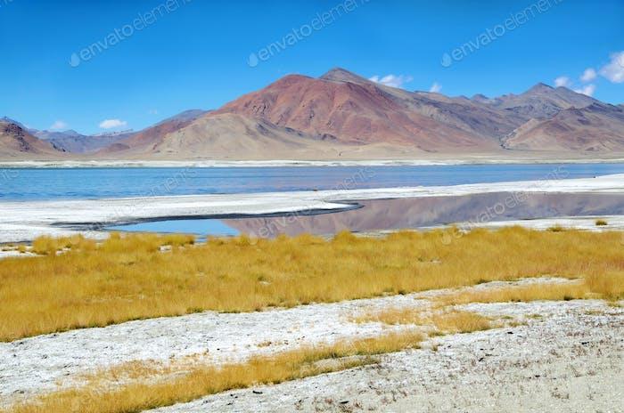 Himalayas salt lake