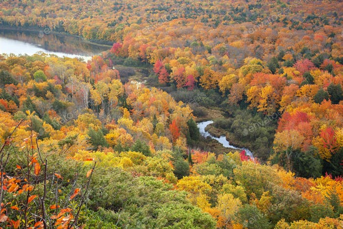 High angle view of trees in brilliant fall color near lake and river