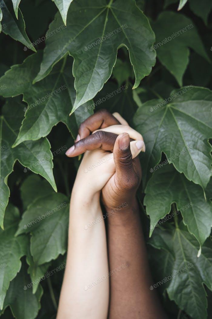 gemischte Rasse Hände halten sich gegenseitig in der Natur
