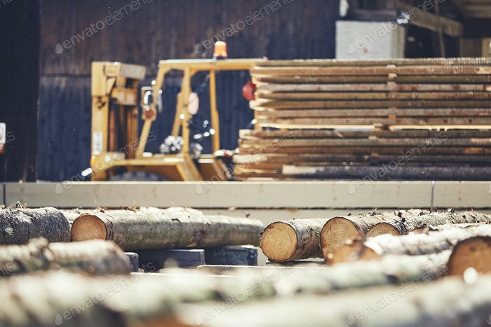 Timber at the sawmill