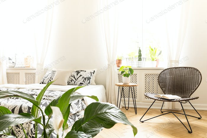 Sunny bedroom interior with a bed, a rattan chair and green plan