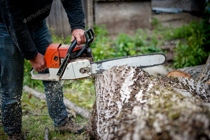 man cutting trees using an electrical chainsaw and professional